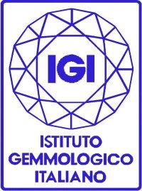 logo_IGI